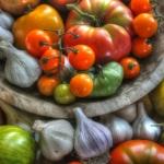 Harvest 2014 copy